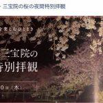 アメックスなら醍醐寺の桜の夜間拝観が見れます!